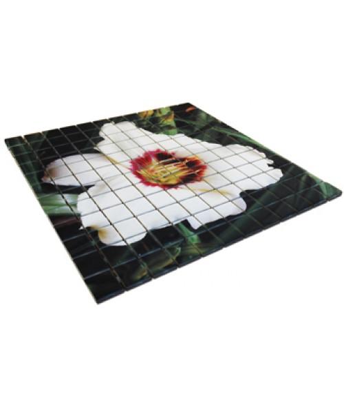 """Bison Matte 12"""" x """"12 Ceramic Mosaic Tile"""