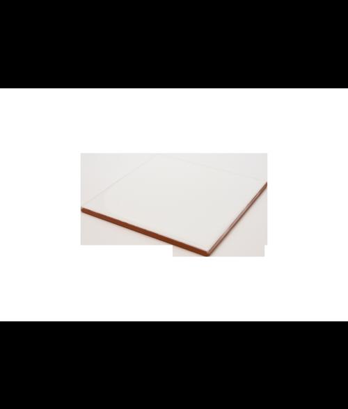 "Bison Gloss 4-1/4"" x 4-1/4"" Spacerless Ceramic Tile"