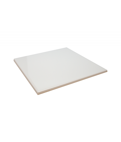 "Bison Gloss 8"" x 8"" Spacerless Ceramic Tile"