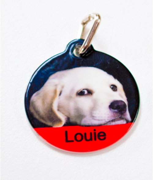 "White 1-1/8"" Circle Pet Tag"