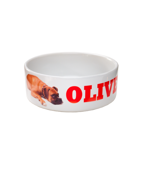 "White 6"" Ceramic Pet Bowl"