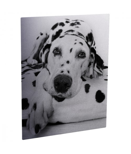 "Unisub ChromaLuxe Matte Silver 5"" x 7"" Rectangle Aluminum Photo Panel"