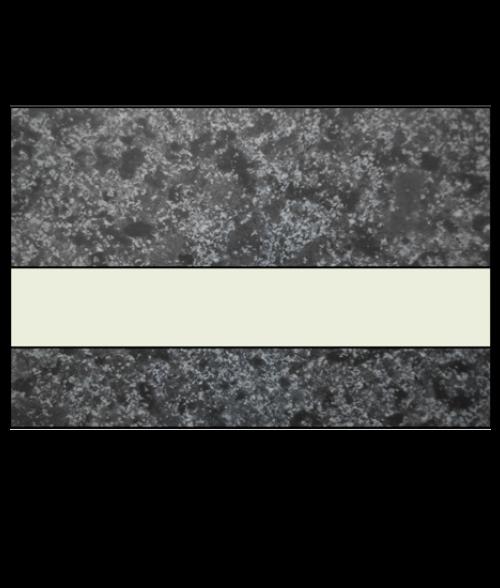 "IPI Architectural Stones Deep Charcoal Marble/Bone White 1/16"" Engraving Plastic"