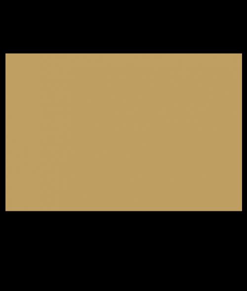 Rowmark ADA Alternative Gold Engraving Plastic