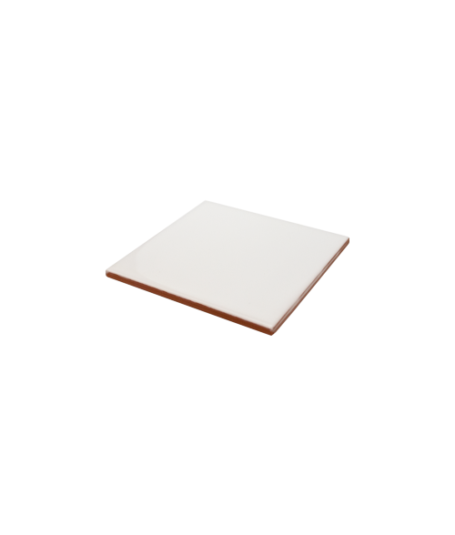 "Bison Gloss 4-1/4"" x 4-1/4"" Spacerless Ceramic Tile"