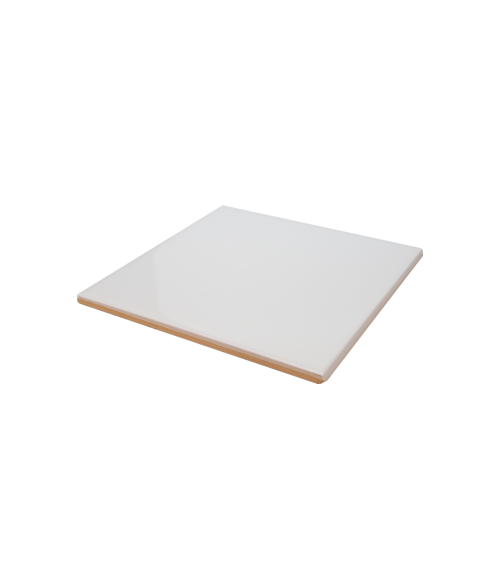 "Bison Gloss 6-1/8"" x 6-1/8"" Spacerless Ceramic Tile"